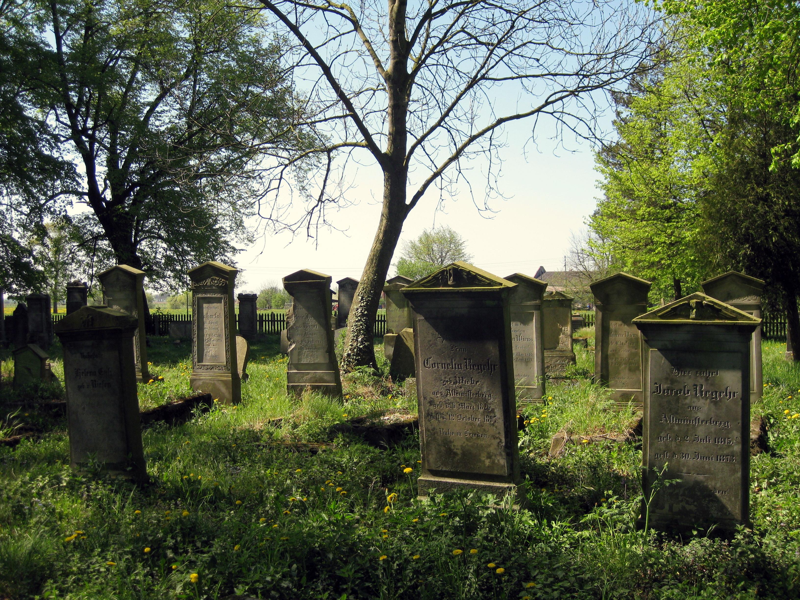 mennonite_graveyard_heubuden_3